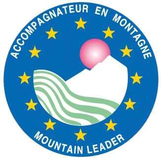 AMM-logo