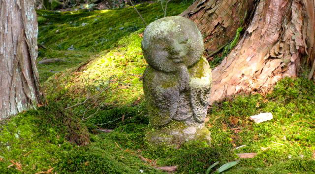 Marche méditative et consciente 7