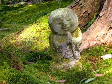 Marche méditative et consciente